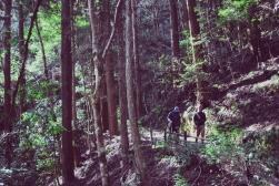 Hike45