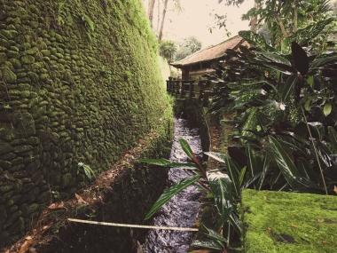 Bali19