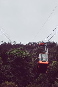 Bogota 17
