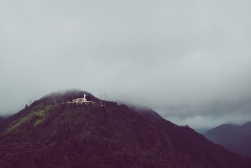 Bogota 24