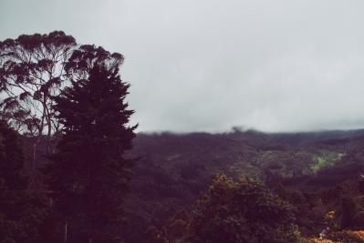 Bogota 26